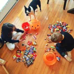 kids sorting candy