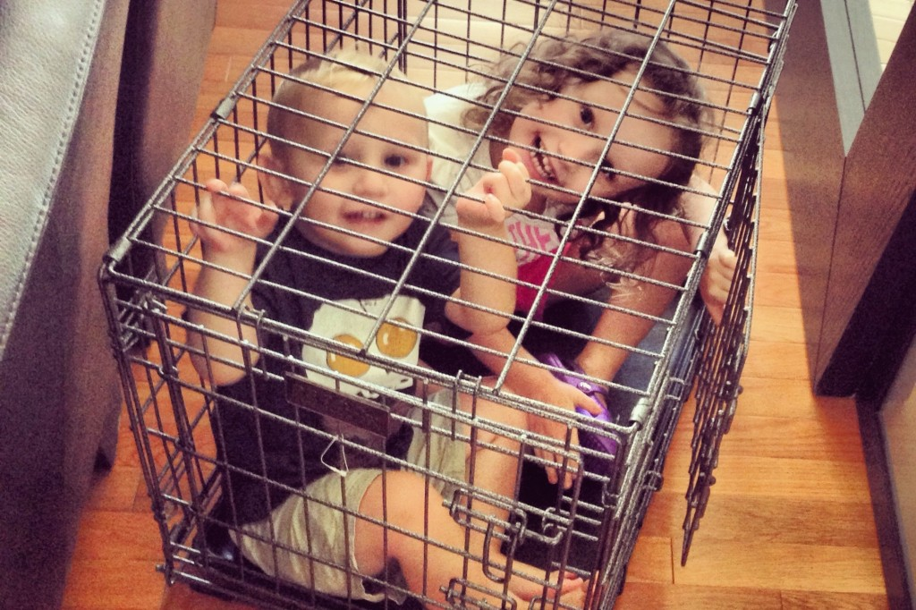 Ava and Charlie in dog cage