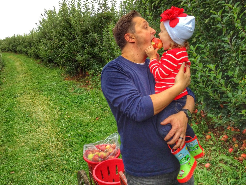 Daddy and Ava picking apples in autumn